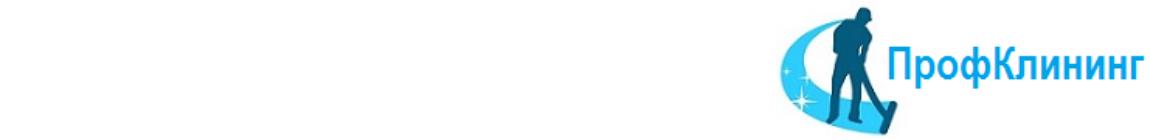 "Логотип клининговой компании ""Проф Клининг"""